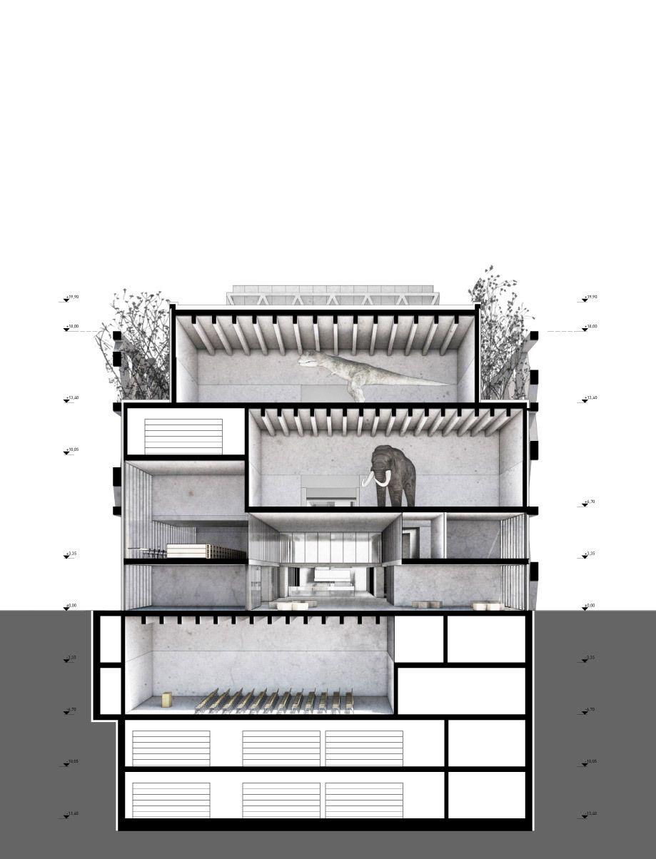 ortner ortner caretta weidmann new museum of natural history basel 10 a f a s i a. Black Bedroom Furniture Sets. Home Design Ideas