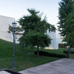 Steven Holl . Nelson-Atkins Museum of Art . Kansas City (5)