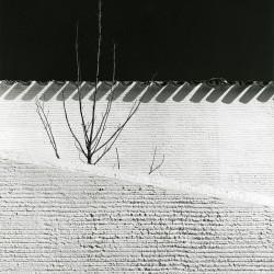 Casa en Somosaguas. Madrid . 1962