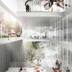Xaveer De Geyter . Natural History Museum and City Archive . Basel (2)