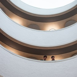 Herzog & de Meuron . Blavatnik School of Government . Oxford (18)