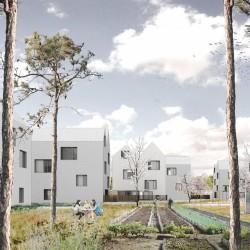 gutgut . navrh 30 hektaroveho . zahori (1)