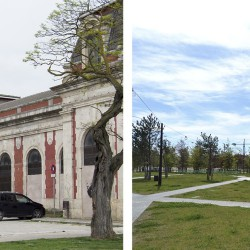 Contell-Martínez . REHABILITATION OF THE OLD RAILWAY STATION . BURGOS  (29)