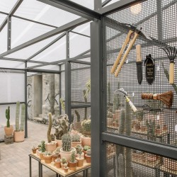 Part . Cactus Store Greenhouse . NEW YORK (10)