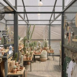 Part . Cactus Store Greenhouse . NEW YORK (13)
