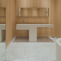 David Chipperfield . Carine Roitfeld's bathroom . Paris (1)