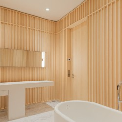 David Chipperfield . Carine Roitfeld's bathroom . Paris (2)