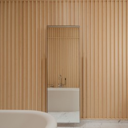 David Chipperfield . Carine Roitfeld's bathroom . Paris (3)