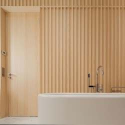 David Chipperfield . Carine Roitfeld's bathroom . Paris (4)