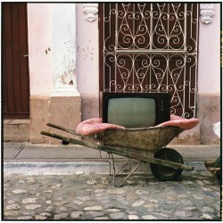 TV Wheelbarrow . 2001