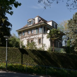 Bureau Brisson . Renovation of private villa built in the 1930's . Lausanne  (23)