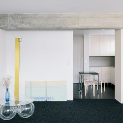 Collet & Muller . Renovation of an apartment from the 60s . Paris afasia (7)