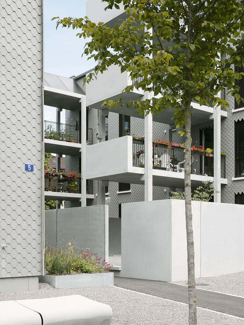 Peter Kunz . Hofwiesenweg housing . Winterthur afasia (6)