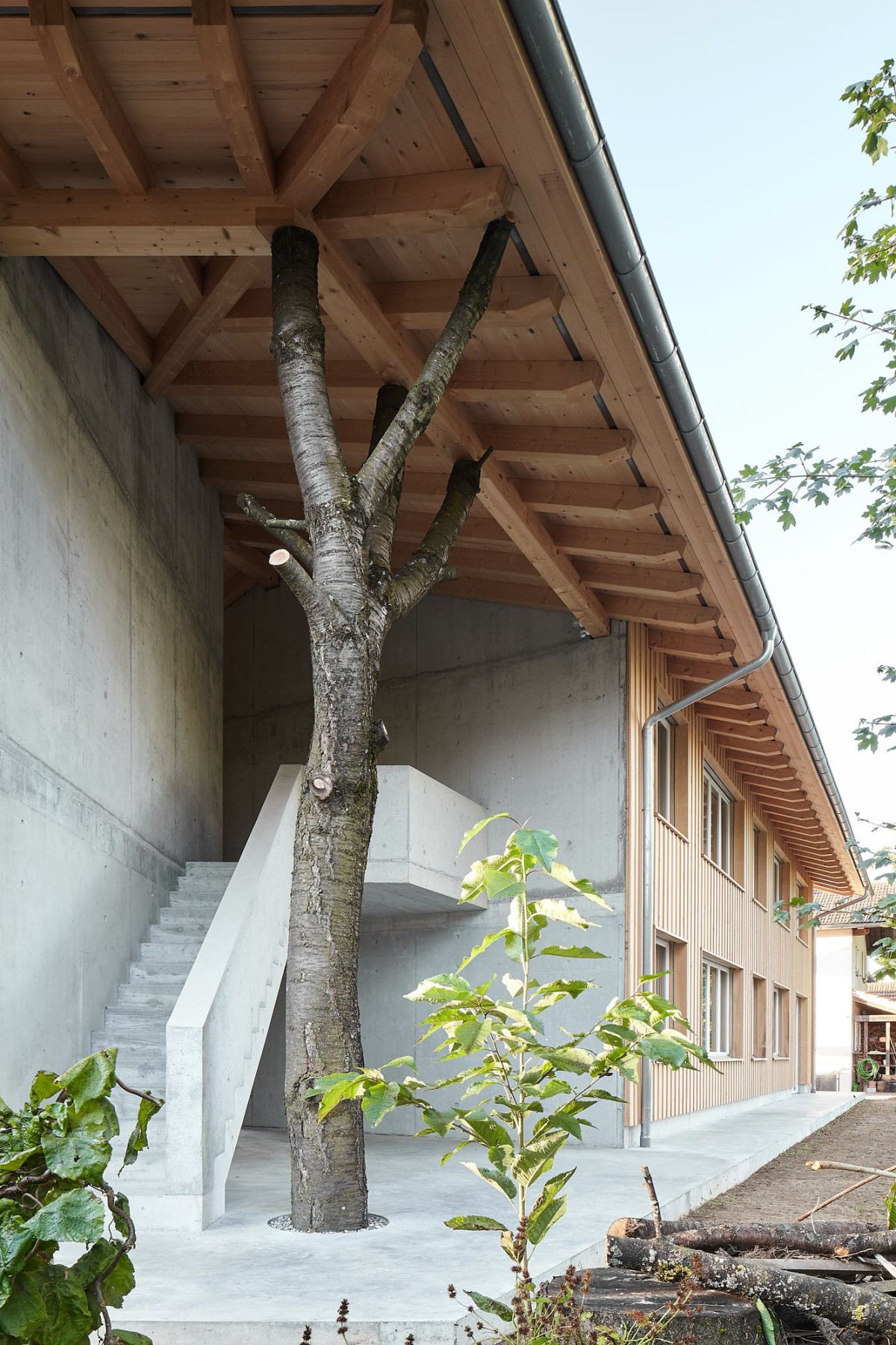 luna productions . Housing building . Deitingen afasia (4)