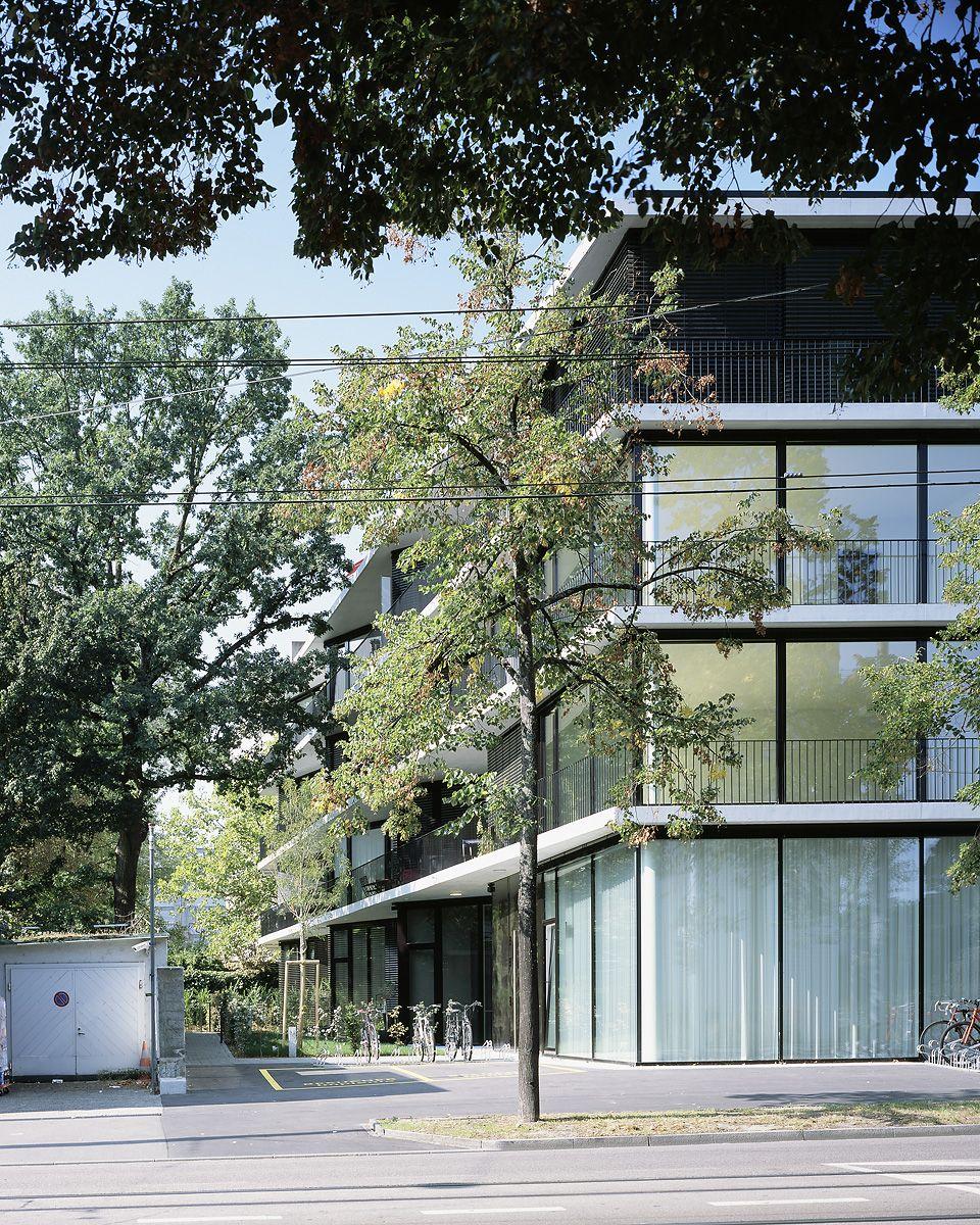 Degelo Architekten . BURGFELDERSTRASSE housing . Basel afasia (1)