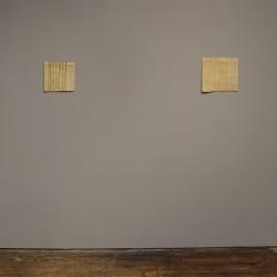 Helen Mirra . Bones are spaces afasia (6)