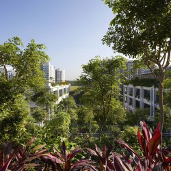 Serie . Multiply . Oasis Terraces . Punggol (13)