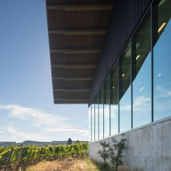 Waechter Architecture . Furioso Vineyards . Oregon afasia (3)