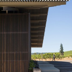 Waechter Architecture . Furioso Vineyards . Oregon afasia (7)