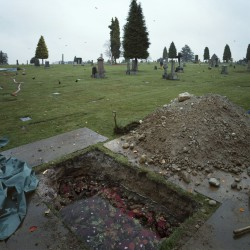 The Flooded Grave . 1998-2000