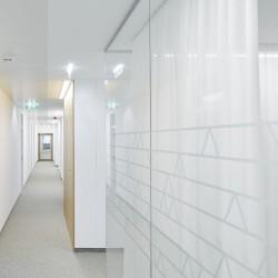 Schenker Salvi Weber . Mohr . Revitalization of ÖBB Offices . Vienna afasia (15)