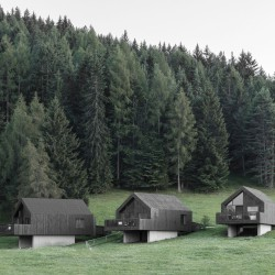 bergmeisterwolf . Fan Forest Houses . Nova Ponente afasia (12)