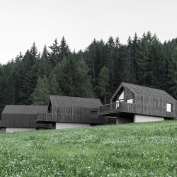 bergmeisterwolf . Fan Forest Houses . Nova Ponente afasia (2)