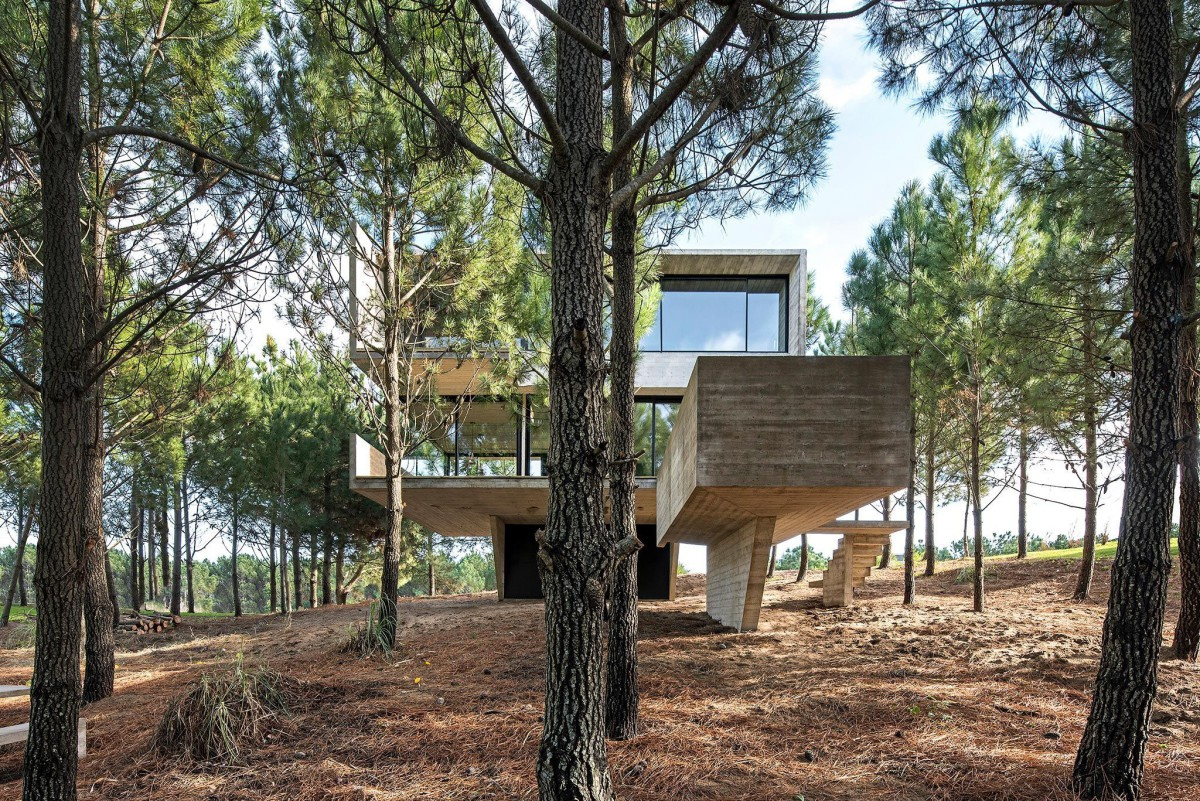 Luciano Kruk . HOUSE IN THE TREES . Costa Esmeralda afasia (1)