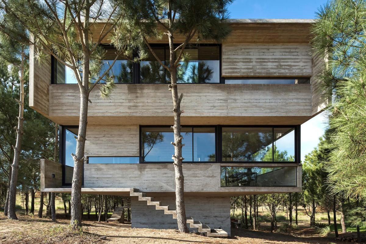 Luciano Kruk . HOUSE IN THE TREES . Costa Esmeralda afasia (14)
