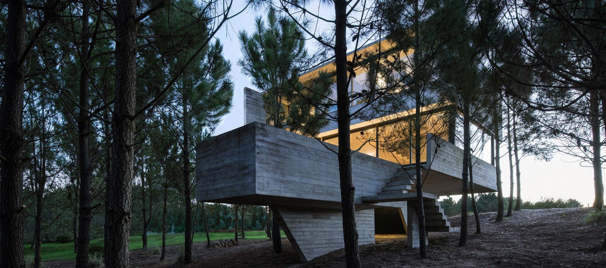 Luciano Kruk . HOUSE IN THE TREES . Costa Esmeralda afasia (16)