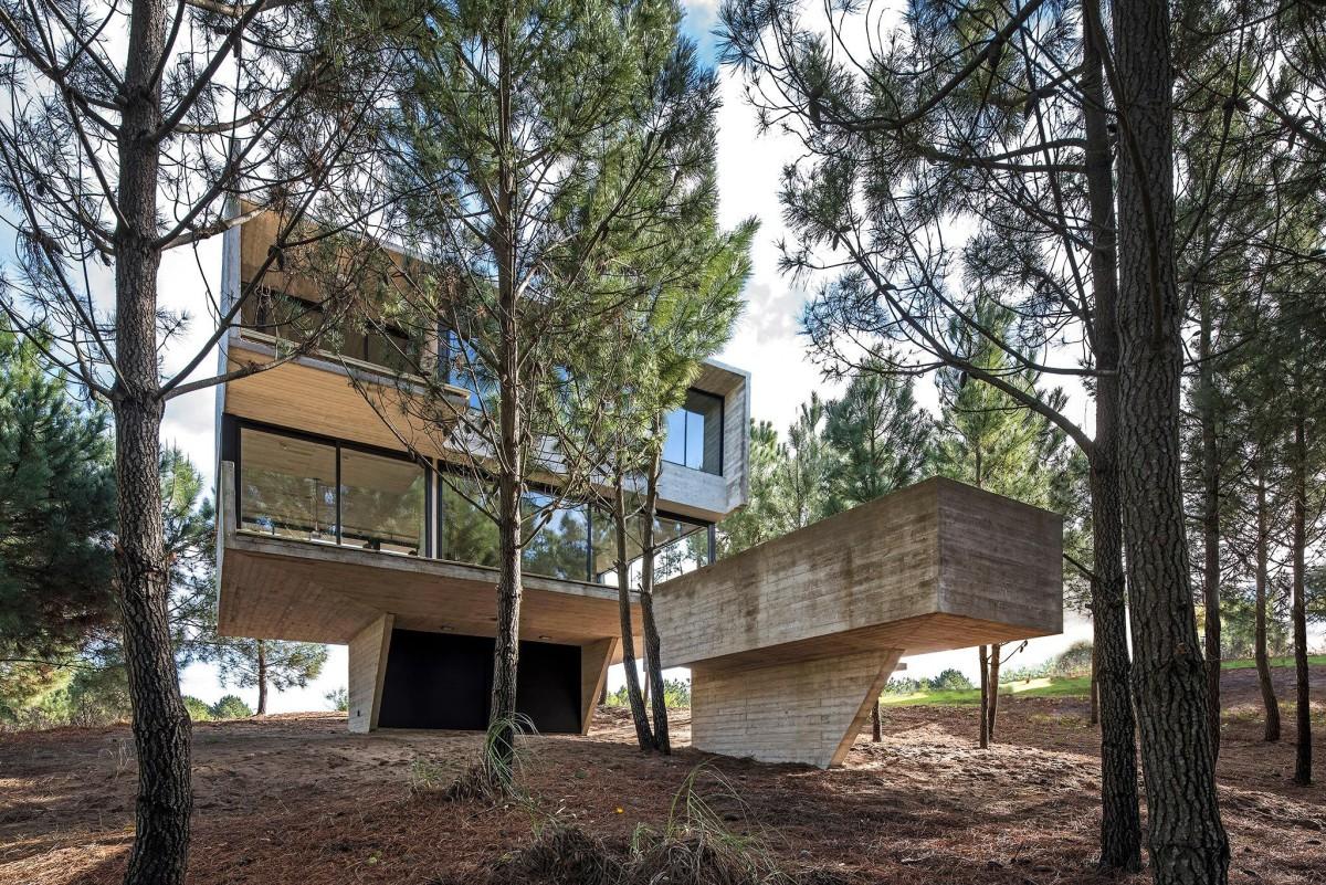 Luciano Kruk . HOUSE IN THE TREES . Costa Esmeralda afasia (2)