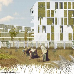 Europan 15 . Productive Cities 2 Results afasia (1)