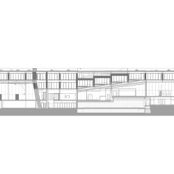 OMA . School of Science and Sports . Brighton afasia (301)