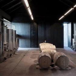 Vincent Van Duysen . Winery Valke Vleug . Liezele afasia + (56)