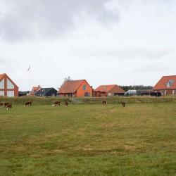 Lenschow & Pihlmann . House on Fanø . Nordby afasia (5)