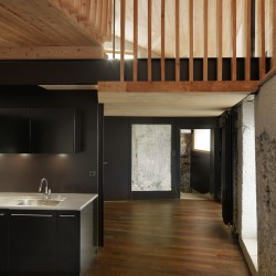 Galletti & Matter . House renovation . Sion afasia (11)