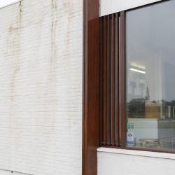 Alvar Aalto . Nordic House . Reykjavík afasia Dieter Janssen (8)
