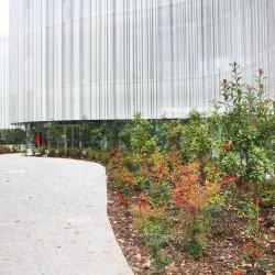 SANAA . new campus bocconi . milan Midori Hasuike afasia (4)