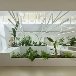 Zigzag Arquitectura . 3D3N . madrid Roland Halbe afasia (10)