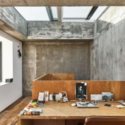 Adjaye Associates . Mole House . London Ed Reeve afasia (14)