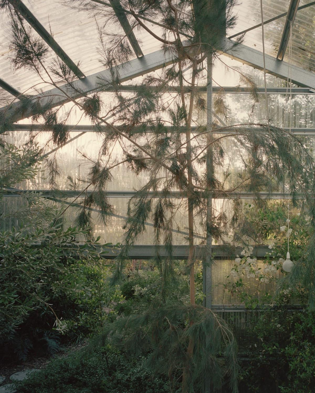 Baracco+Wright . Garden House . Westernport Rory Gardiner  afasia (13)